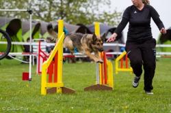 Agilityturnier 25.04.2015 Jumping und Spiel